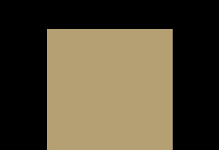 MaC500
